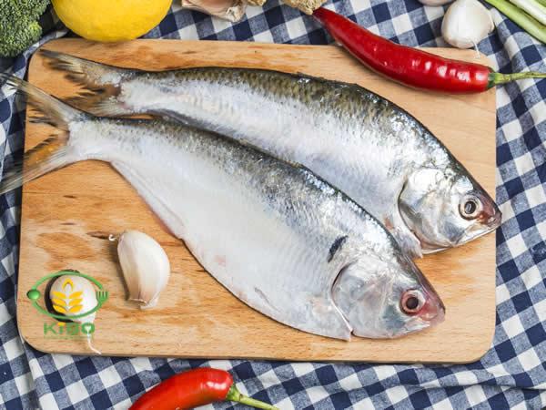 مرینت کردن ماهی