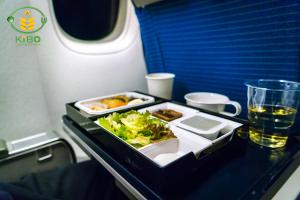 طعم غذا در هواپیما